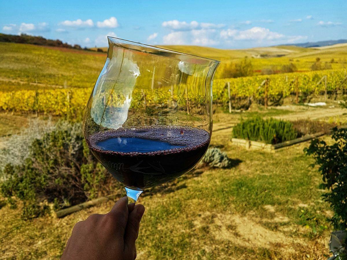 Супертосканские вина: Сассикайя и Орнелайя