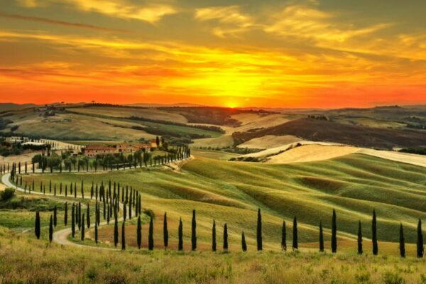 Экскурсовод по Тоскане (фото 1)