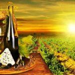 Винные туры по Тоскане (фото 1)